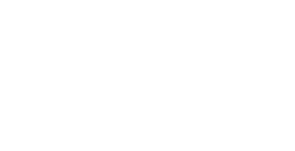 Prana Wealth Management main site logo